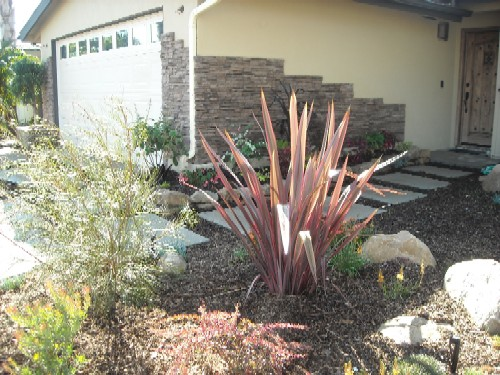 Garden Landscaping Newport : Mark talmo landscape huntington beach photo gallery